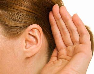 The Training EAR – Garry Smith and Jayne Wharf